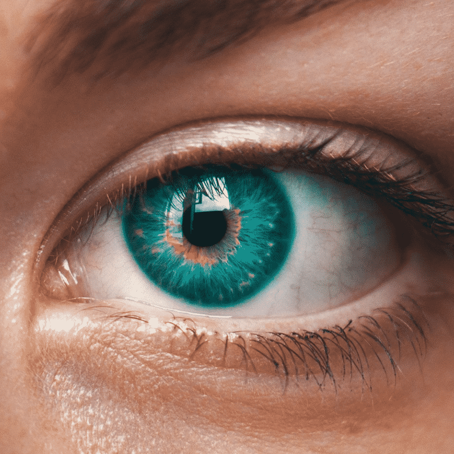 iridology-and-sclerology-assessment